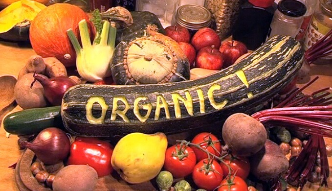 Organic Food and Accessories