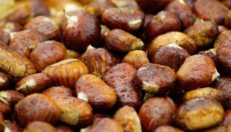 Nutritional Benefits of Chestnuts